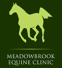 Meadowbrook Equine Clinic